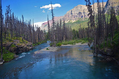 Along the colorful river (kirsten.eide) Tags: trees nationalparks explore glaciernationalpark hiking nature mountains colors water river