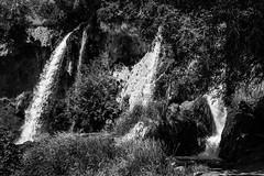 Waterfall - Rifle Falls, Colorado (BeerAndLoathing) Tags: 2018 usa roadtrip riflefalls 77d pallisadetrip august trip waterfall canon summer canoneos77d colorado blackwhite