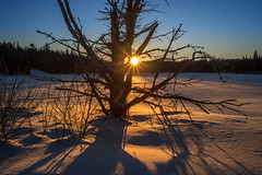 Ancien (martinmenard757) Tags: jour lever soleil ray sun winter quebec hiver ancien martinnenard abigfave