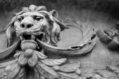 Taking His Share (belleshaw) Tags: blackandwhite downtownriverside lion stone carving leaves texture rough planter kingoftheurbanjungle detail abstract