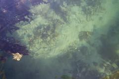 Distorsion in water (O.Sjomann) Tags: winter water vinter vann sea hav havn harbour distorsion forstyrrelse grønn green arcticseasport naurstad løding tverlandet bodø bodoe nordland norway northernnorway nordnorge norge canon7d canonefs1018