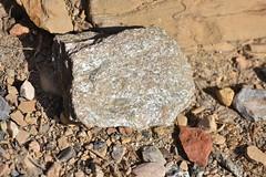 Roca metamórfica (esta_ahi) Tags: vimbodíipoblet vimbodí concadebarberà tarragona spain españa испания