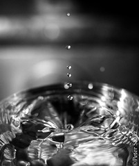 Drop of life (Peter Szasz) Tags: calm canon clear close closeup bright blackwhite monochrome moody object water life light dark drops dripping drip 50mm 50 colorless liquid shallow shadows sink hole black reflection drink creative tranquil melancholic bokeh macro white canon80d 80d