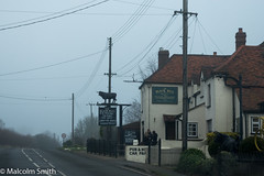 The Black Bull (M C Smith) Tags: fyfield essex fog theblackbull black bull figure sign board letters cycle yellow bushes green road wires numbers speedlimit posts telegraphpoles kerb lines white railings trees red stones blue sky