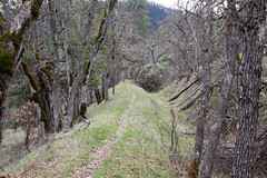 The Sterling Mine Ditch Trail follows its namesake ditch (rozoneill) Tags: sterling mine ditch trail ruch jacksonville oregon hiking blm little applegate river