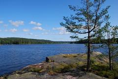 DSC_0092 (MSchmitze87) Tags: schweden sweden dalsland kanu canoeing see lake