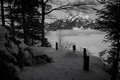 picnic area Schiltflue (Toni_V) Tags: m2400587 rangefinder digitalrangefinder messsucher leica leicam mp typ240 type240 28mm elmaritm12828asph hiking wanderung randonnée escursione waldstätterweg schiltflue schiltwald pilatus snow schnee bw monochrome sep2 silverefexpro2 niksoftware schwarzweiss blackwhite picknickplatz switzerland schweiz suisse svizzera svizra europe ©toniv 2019 190406 nidwalden nebel fog mist nebelmeer