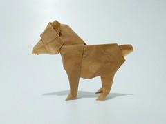小熊 (guangxu233) Tags: bear origami origamiart paper art paperart paperfolding fold 折纸 折り紙 折り紙作品 handmade