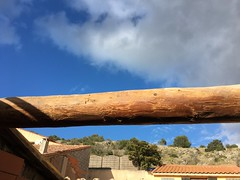 Wooden beam in the sun