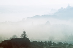 Niebla misteriosa. (JuanCarlossony) Tags: siluetas castillo pajaros casa iglesia niebla frio rocío sony 70300mm tamron slta58 a58