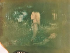 rising from the meadow (Britt Grimm) Tags: polavoid polaroid polaroid250 expiredinstantfilm expiredpolaroid expiredfilm expired filmisnotdead filmphotography analog analogue analoguephotography believeinfilm doubleexposure fourlines polaroidphotography instantphotography instantfilm resurrection brittgrimm grimmtales