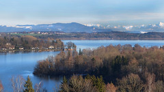 Finally sun again - (rotraud_71) Tags: germany bavaria wagingersee lake winter mountains forest water sky