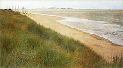 Dans les dunes de Knokke, Belgium (claude lina) Tags: claudelina belgium belgique belgië knokke merdunord noordzee plage sable beach cabines dune port haven zeebruges oyats