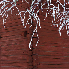 Frozen beauty (A blond-Tess) Tags: winter winterdays faluröd falured frosty frozen frozenbranches snowonbranches branches square canonphotography january bright wintermood 7d redhouse oldwoodenhouse woodenhouse treebranches