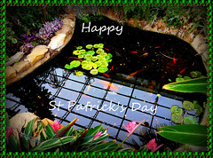 Happy St Patrick's Day (Rollingstone1) Tags: stpatricksday ireland holiday festival event gree gold goldfish water rock flower fourleafclover plants reflections light pool art artwork