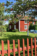 IMG_2705-1 (Andre56154) Tags: schweden sweden sverige haus house holzhaus gebäude building zaun fence baum tree