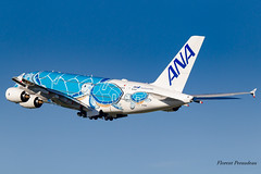 JA381A All Nippon Airways Airbus A380-841 Lani the flying Turtle (Florent Péraudeau) Tags: ja381a all nippon airways airbus a380841 lani flying turtle 388 a380 380 a 841 800 rolls royce japan first a388 based tokyo hawai honolulu
