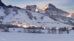 Snowy Scene (ivanstevensphotography) Tags: mountainssnowtreessuncloudsswitzerlandschwyz