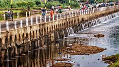 Bridge over troubled water • Madurai - Vaigai River (Henk oochappan) Tags: img5078 india tamilnadu madurai vaigairiver oochappan