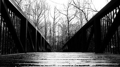 The bridge: low angle (@manylaughs) Tags: manylaughs barcroftpark arlington va blackandwhite bnw bw bridge