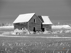 Little House On The Snowy Plain BW (Sybaristail of Sybaristail Photo & Art) Tags: alberta canada canadian farm ice icy nikon photo rural snow winter abandoned blackandwhite blackandwhitephotography farmhouse farmland landscape landscapephotography landscapescenery monochrome photography rurallandscape ruralphotography ruralphoto ruralscenery nikonphotography monochromephotography canadianphotographer nikonphotographer