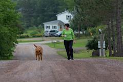 _MG_9360.jpg (joanna.mills) Tags: terrykellyproductions roachville tirnanog fredericton diabetesnb newbrunswick forestschool livewell dog bienvivre