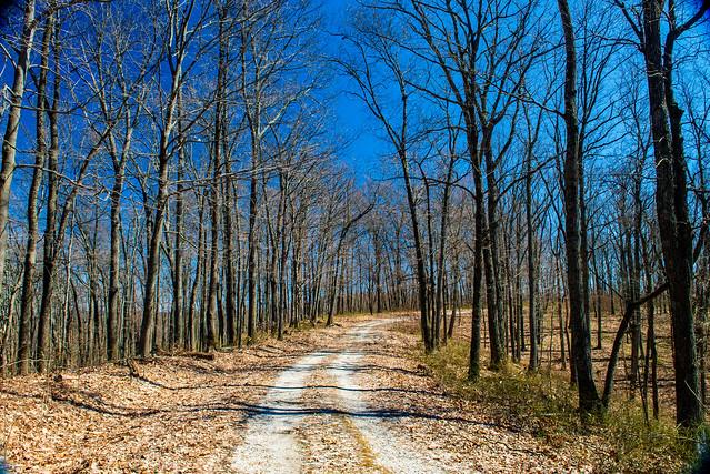 Hoosier National Forest - Fork Ridge Trail - March 16, 2019