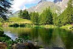 Lago blu (dino_x) Tags: panorama landscape mountains alpi alps lago lake water acqua montagna allaperto nature riflessi reflections paesaggio roccia italy valtournenche cervino