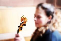 Kerstin and her violin (frenziM´s little world) Tags: music musician violin concert portrait womanportrait mood artistic artisticphotography