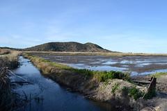 Marjal de Pego 17 (dorieo21) Tags: colina hill marjal marsh pego