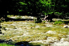 Guadalupe River (austexican718) Tags: centraltexas hillcountry river weather nature landscape water foliage trees