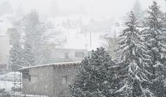 019Jan 08: Blizzard in City (Johan Pipet 2M+ views) Tags: flickr sneh snow zima winter blizzard fujavica city mesto dubravka suburb town bratislava urban trees stromy slovensko eu europe palo bartos bartoš g7x slovakia houses