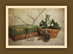 Still Life (N.the.Kudzu) Tags: stilllife tabletop books glass vase foliage canoneosm lensbabytrio28 basket pine cones lightroom photoscape texture frame