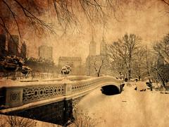 DSC_0913 copie (C&C52) Tags: paysageurbain landscape parc hiver artnumérique