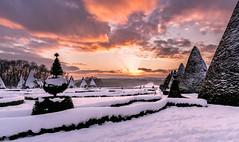 Parc de Sceaux sous la neige (l.pigault) Tags: 70200f2 nikon famille d800 parcdesceaux sceaux 2017 5 châtenaymalabry arboretum parc 1835f3 8 paysage 54 glissade jeux château neige