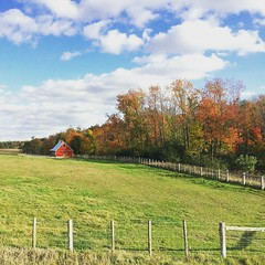 IMG_4913 (jessalynn_sammons) Tags: iphone countryside field fence redbarn barn sky clouds autumnsky fallcolours autumncolours colours autumn red