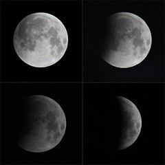 The Beginning of the Lunar Eclipse January 2019 (@FunkyAppleTree) Tags: lunar eclipse january 2019 moon supermoon fullmoon full london england wolf blood bloodmoon wolfmoon sky astro astrophysics astrophotography astronomy solarsystem space cosmos universe super illuminated crater solar system science earth sun lunareclipse total lunareclipselondon eclipselondon2019 fullmoonuk lunareclipseuk eclipseuk londonlunareclipse