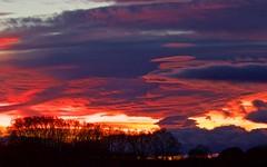 Coucher de soleil à Milhaud - IMG_5447 (6franc6) Tags: occitanie languedoc gard 30 milhaud janvier 2019 6franc6 vélo kalkoff vae