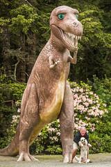 Scott and Margaux Make a New Dinosaur Friend (Thomas Hawk) Tags: america margaux oregon oregoncoast poodlemargaux portorford prehistoricgardens scottjordan scottevest usa unitedstates unitedstatesofamerica dinosaur dog poodle us fav10 fav25