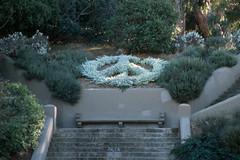 Buena Vista Park, San Francisco, California (Roger Gerbig) Tags: sanfrancisco california rogergerbig canoneos3 canonef28105f3545 kodake100g slidefilm 135film 35mm buenavistapark