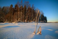 Winter scene (Antti Tassberg) Tags: lumi bokeh luonto landscape talvi outdoor espoo suomi 14mm finland lens nature prime scandinavia snow winter
