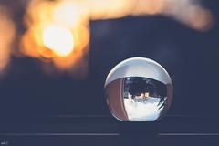 39/360 (misa_metz) Tags: nikon nature naturephotography photo photography tokina lights colors color sunset lensball indoor bokeh