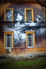 Roma- Museo della mente (alessandro nicomedi) Tags: street murales museodellamente roma museo streetart donna uomo