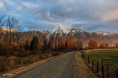 Mount Cheam - Agassiz, BC (SonjaPetersonPh♡tography) Tags: cheampeak mountcheam fraservalley thefraservalley bc britishcolumbia canada nikon nikond5300 mountainlandscape mountains landscape peak mountain scenery scenic nature farmland mtcheam agassiz community country road trees