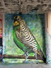/ DOK - 26 dec 2018 (Ferdinand 'Ferre' Feys) Tags: gent ghent gand belgium belgique belgië streetart artdelarue graffitiart graffiti graff urbanart urbanarte arteurbano ferdinandfeys ceepil