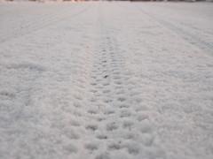 2019 Bike 180: Day 49, March 12 (olmofin) Tags: 2019bike180 finland bicycle snow tracks tire renkaanjäljet polkupyörä lumi lumessa