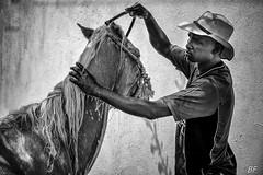 The shower ! (poupette1957) Tags: art atmosphère animals black canon curious humanisme horse hat imagesingulières life monochrome man noiretblanc photographie people portrait colombie rue street town travel ville voyage