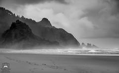 A Rainy Day (allentimothy1947) Tags: blackandwhite neskowinbeach oregon bw beach breakers centralcoast clouds fog footprint hazy moody mountains pacificocean rain sand surf water