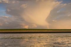 Waarde (Omroep Zeeland) Tags: zeedijk regenboog waarde westerschelde slik