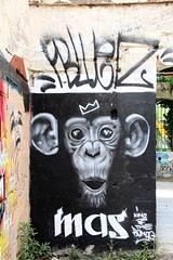 King of the Bongo (just.Luc) Tags: chimpansee schimpanse chimpanzé chimpanzee graffiti grafitti streetart urbanart letters lettres text words mots woorden wörter wall muur mur mauer france frankrijk frankreich francia frança bordeaux gironde nouvelleaquitaine darwin europa europe